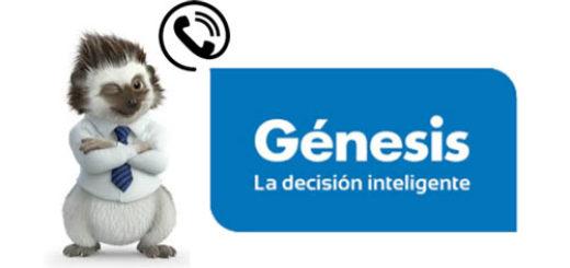 telefono-genesis-seguros